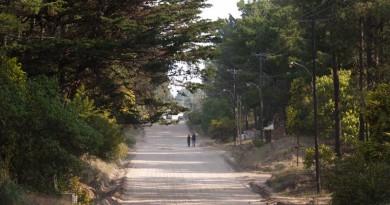 Un paseo por el paraíso
