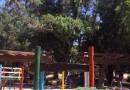 Plaza abierta